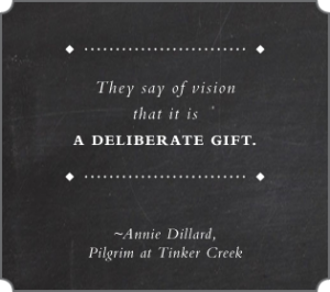 Vision is a Deliberate Gift